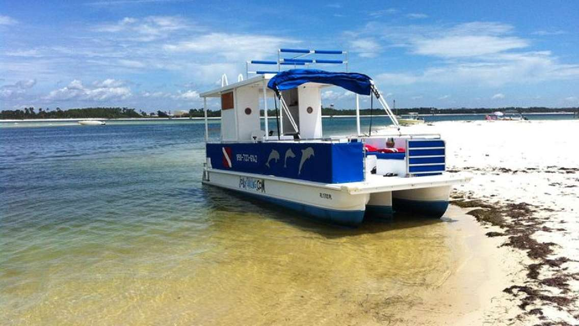 3 Hour Private Powerboat Dolphin Cruise with Remote Beach Stop up to 6 guests