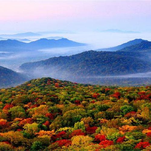 Jinlong Mountain National Forest Park