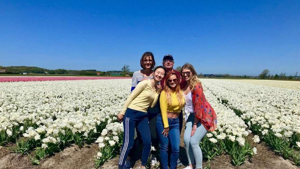 Small Group Tulip and Spring Flower Fields Bike Tour