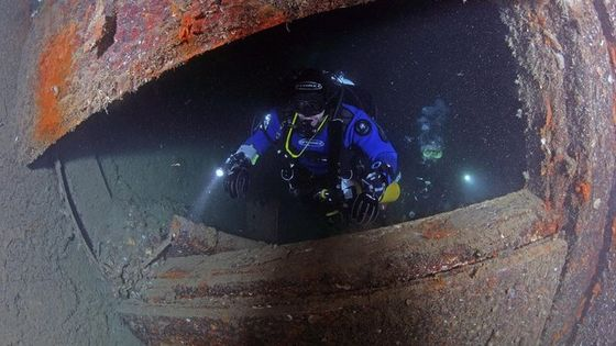 Wreck Diving Specialty Course