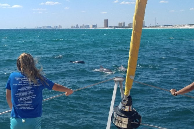 Panama City Beach Dolphin Sightseeing Sail on The Privateer Catamaran