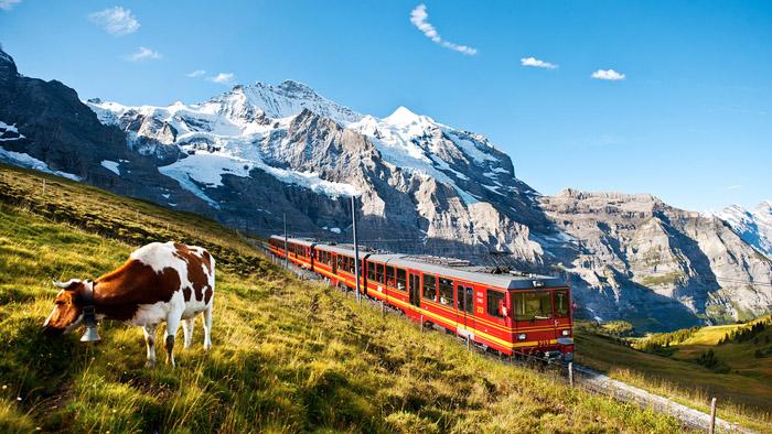 From Zurich: Day Trip to Jungfraujoch + Alpine Sensation + Sphinx observation + Ice Palace