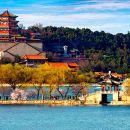 北京八達嶺長城+頤和園+鳥巢、水立方一日游(四環上門接可選  純玩一日游)