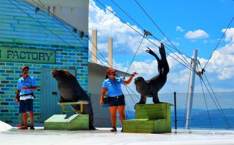 수빅 만 1일 투어 (마닐라 출발, 수빅 만 & 야생동물원/해양공원)