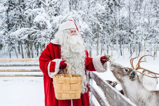 Trip to Arctic Circle, Santa Claus Village and Santas Reindeer