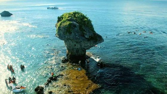台灣小琉球生態島嶼一日遊(高雄接送+小琉球船票+浮潛尋覓海龜)