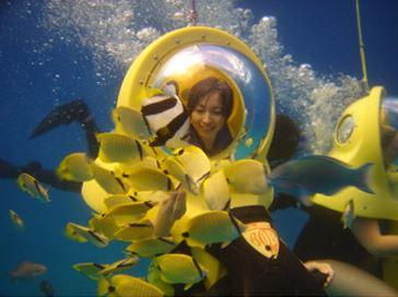 하와이 수중 스쿠터 스노클링