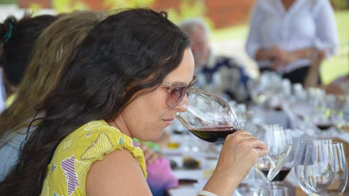 Private Wine Tours by Wine Explorers Uruguay