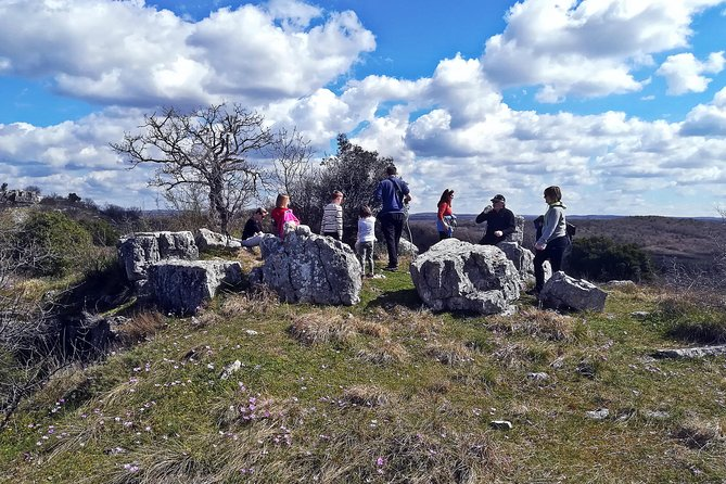 Archaeological walk and honey tasting
