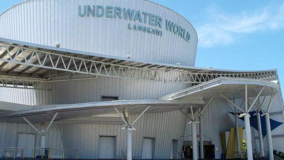 Langkawi Underwater World Admission Ticket
