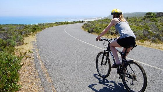 Full Day PRIVATE Cape Point and Peninsula Tour with EBikes
