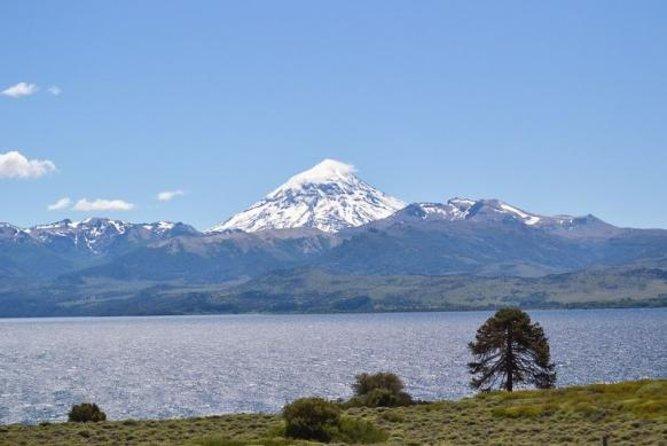 Lake Huechulafquen and Lanin Volcano Day Trip