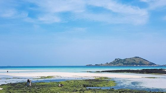Jeju West Course - (Lunch included) Bus Tour, Full-day Tours, Day Trips