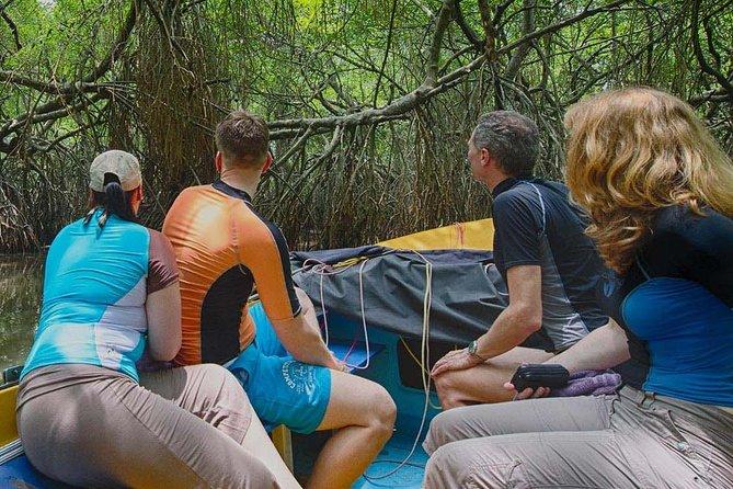 Madu River Safari Balapitiya - Day Tour
