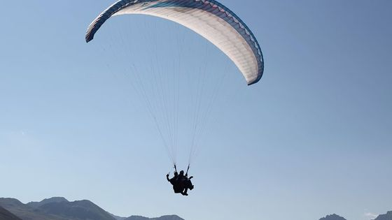 Davos Absolutely Free Flying Paragliding Tandem Flight 1'000 Meters High