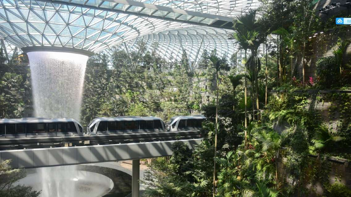 Singapore Jewel Changi Airport Canopy Park Ticket and Package