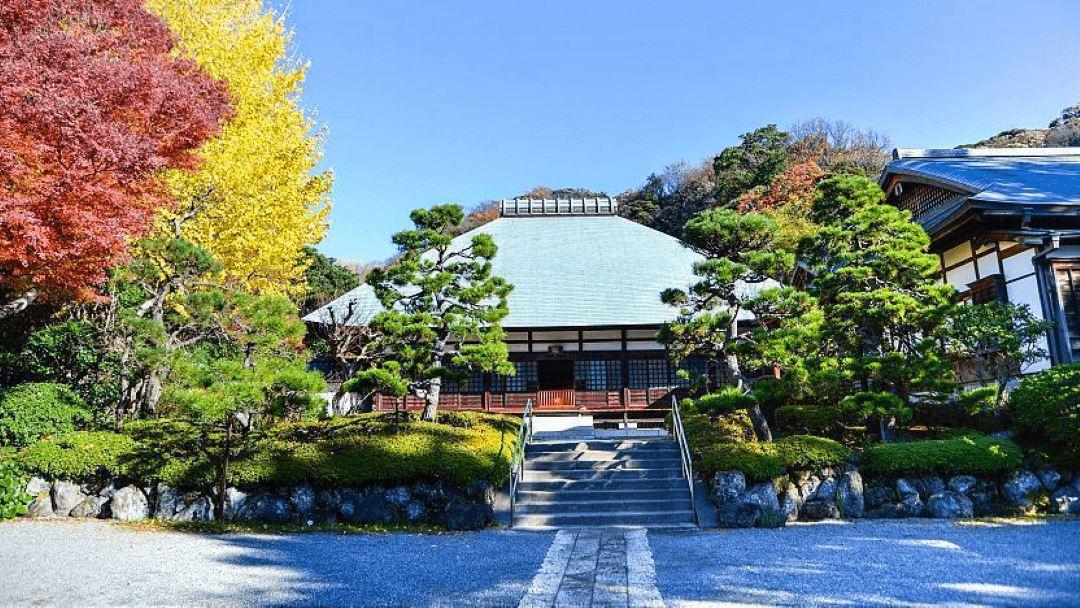 Kamakura & Enoshima Bay Drive Tour