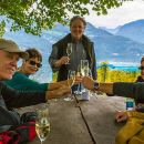 Small Group Wine Tasting by Lake Lucerne in a Traditional Winery