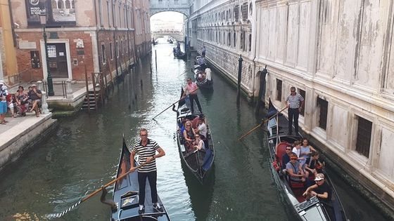 Venice full-day guided tour from Milan - Hotel pick up