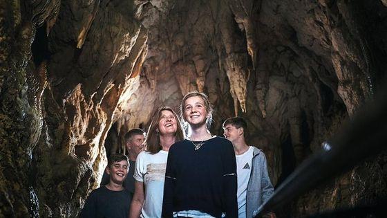 Waitomo Caves Day Trip, Option to Add Hobbiton ex Taupo