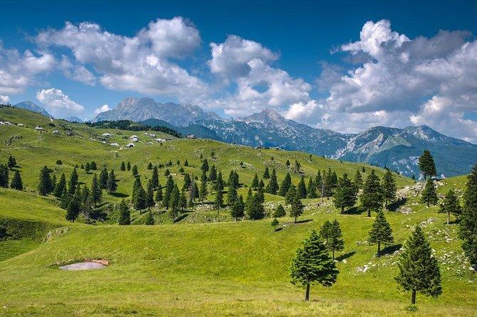 Private Kamnik & Velika Planina Tour from Ljubljana