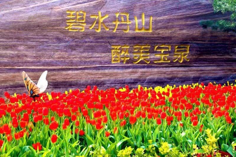 Xinxiang Baoquan Scenic Area Ticket + Return Shuttle Bus Trip within the Scenic Area