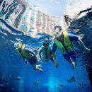 Dubai Lost Chambers Ultimate Snorkel Experience