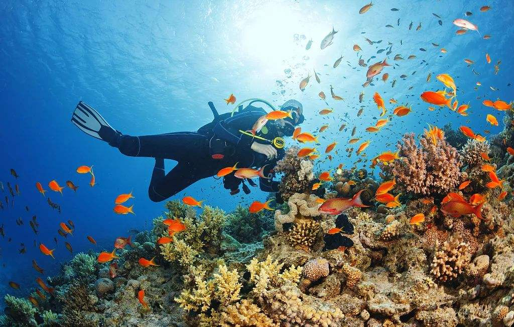 Hurghada Scuba Diving