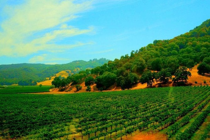 Napa and Sonoma Valley Wine Country Tour from San Francisco