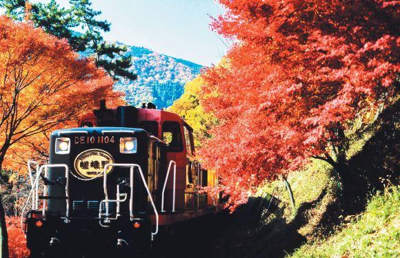 嵯峨野觀光小火車+嵐山+清水寺+伏見稻荷大社一日遊(浪漫嵐山小火車)
