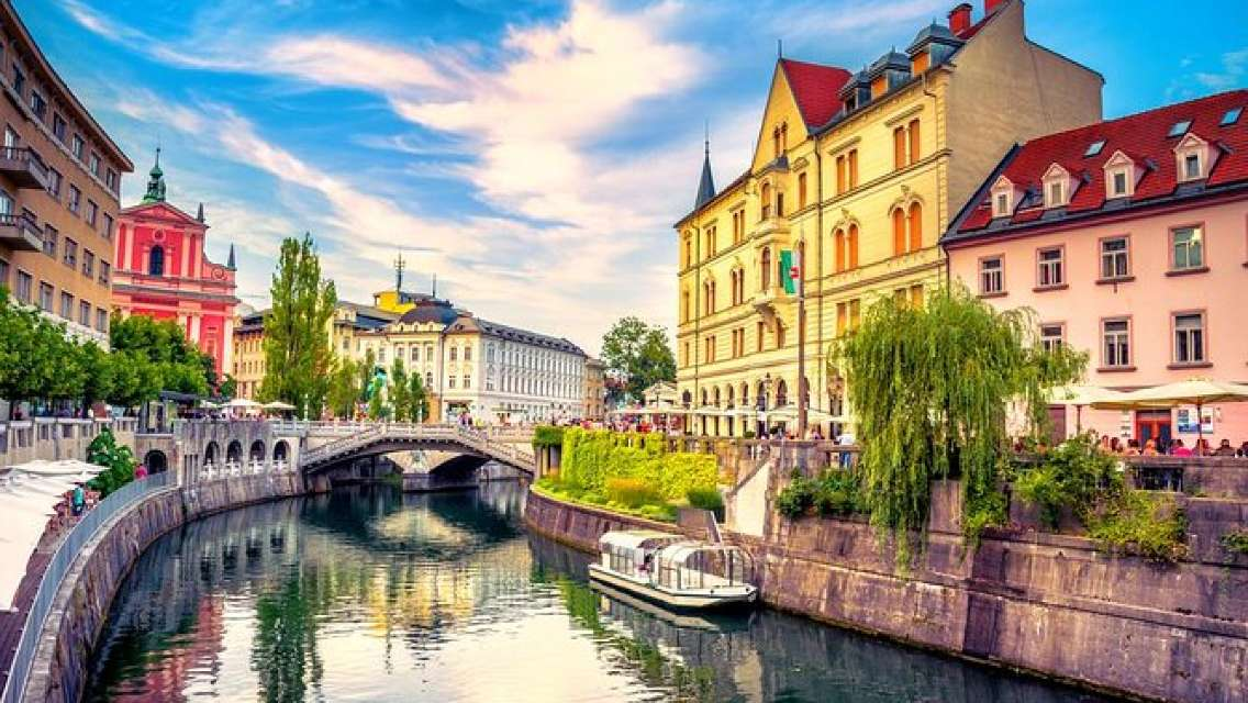 Slovenia Private Tour including Ljubljana & Bled from Vienna