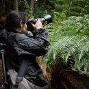 Mountain & Wildlife private premium photo-oriented day tour in Hobart, Tasmania