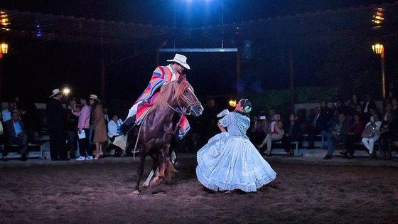Dinner Show: Pride, Passion and Magic - Peruvian Paso Horse