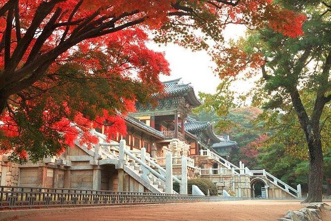 Customized Gyeongju UNESCO trip