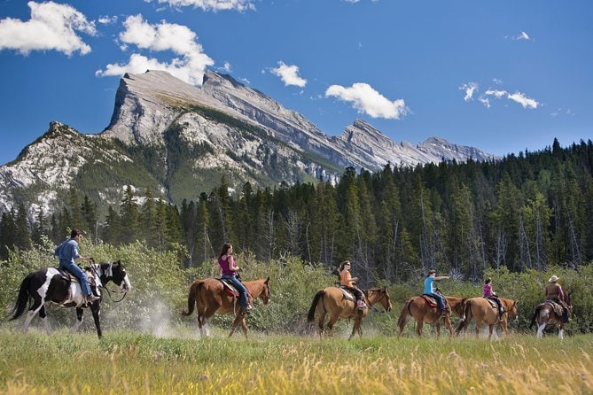 3 Hour Bow Valley Loop Horseback Ride