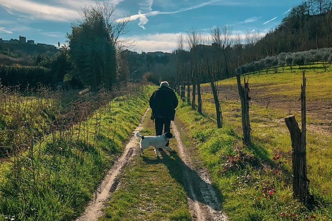Truffle Hunting with Lunch and San Miniato Guided Tour