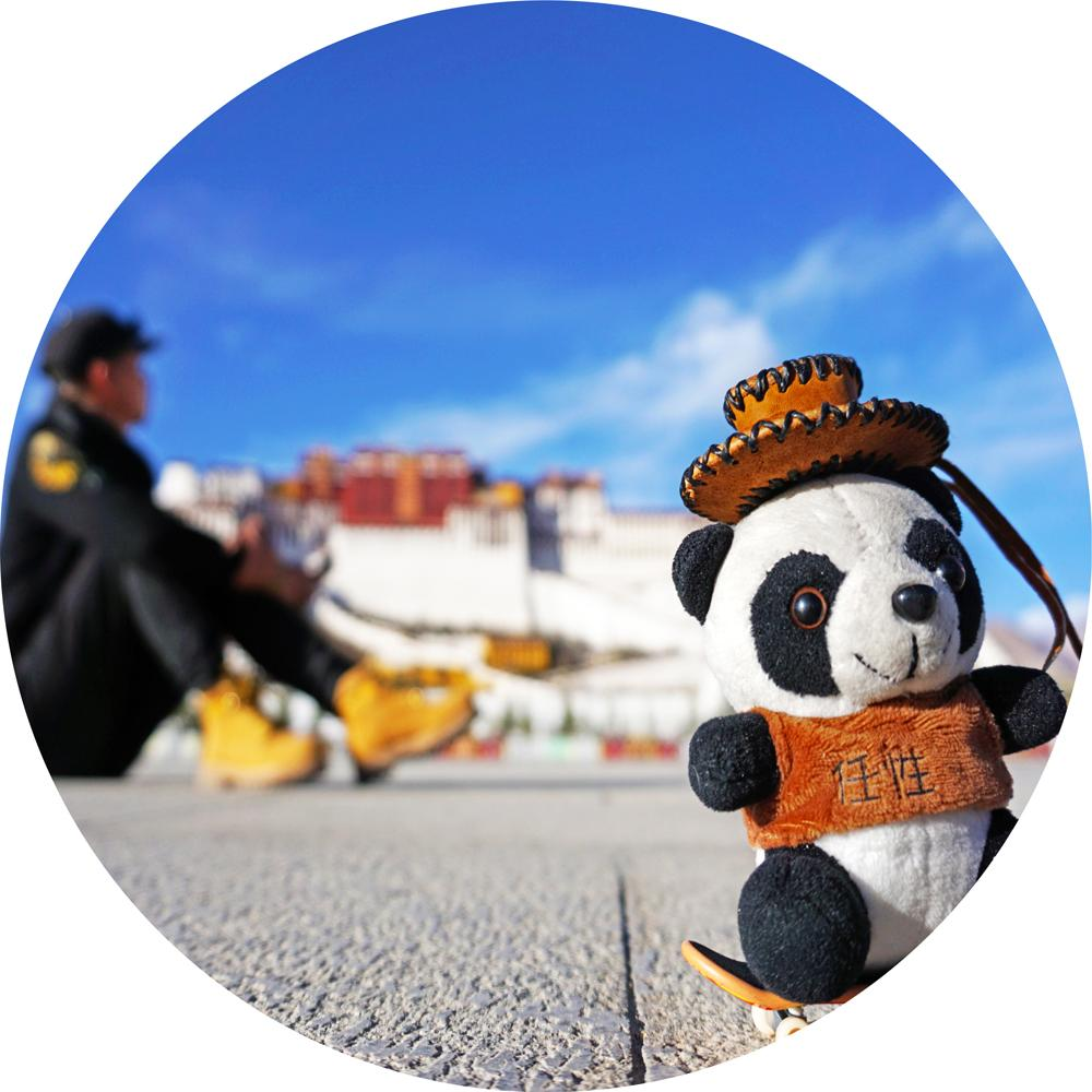 Panda_Slow_Travel
