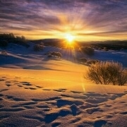 冬日阳光64