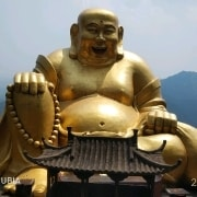 林霞客游记