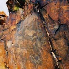 Lumangou Rock Painting User Photo