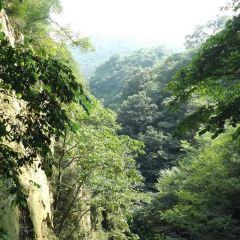 三潭風景區用戶圖片