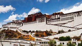 西藏運動活動
