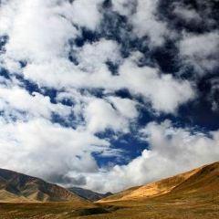 都蘭狩獵場用戶圖片