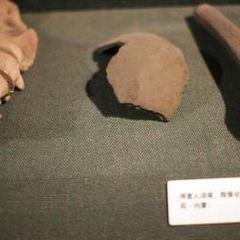 Museo Naturalistico e Archeologico User Photo