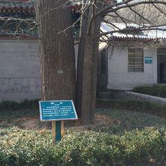 Gaotang Temple User Photo