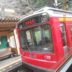 箱根登山纜車用戶圖片
