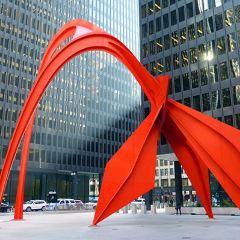 Calder's Flamingo User Photo