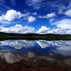 濘吉湖用戶圖片