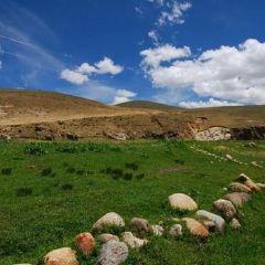 桑日馬鹿自然保護區用戶圖片