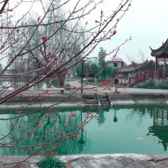 Bishuiwan Resort User Photo